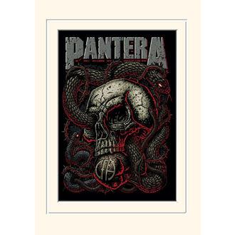 Bild Pantera - PYRAMID POSTERS, PYRAMID POSTERS, Pantera