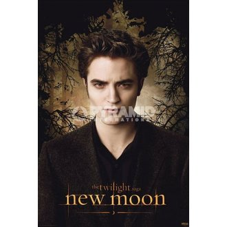 Poster Twilight - New Moon (Edward Trees) - PYRAMID POSTERS, TWILIGHT