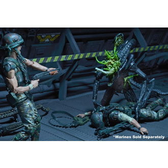 Figur (Dekoration) Alien- Xenomorph Warrior, Alien - Vetřelec