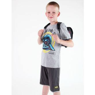 Set für Jungen ( T-Shirt + Shorts) TV MANIA - Angry Birds / Star Wars - Grey, TV MANIA