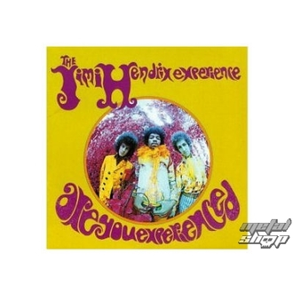 Figur (3D Bild) JIMI HENDRIX are you Experienced Plaque AbBildung , Jimi Hendrix