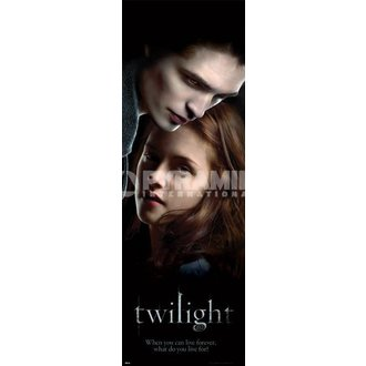 Poster Twilight (Edward & Bella) - PYRAMID POSTERS - CPP20156