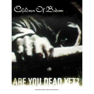 Fahne Children of Bodom - Are you Dead noch?, HEART ROCK, Children of Bodom