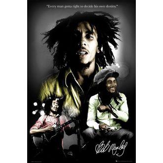 Poster - BOB MARLEY Destiny - LP1328