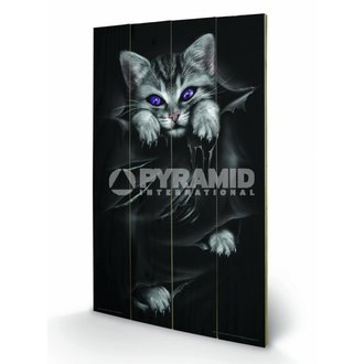 Holzbild Spiral (Bright Eyes) - Pyramid Posters, SPIRAL