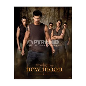 Poster Twilight - New Moon (Wolf Pack) - MPP50303, TWILIGHT