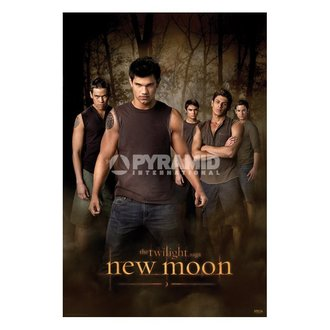 Poster Twilight - New Moon (Wolf Pack) (Twilight) - PP32065, TWILIGHT