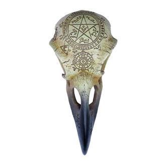 Dekoration ALCHEMY GOTHIC - Omega Raven Skull, ALCHEMY GOTHIC